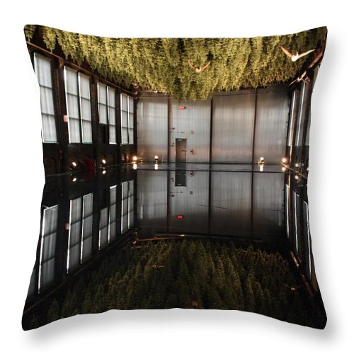 Water Throw Pillow featuring the photograph Between Heaven And Earth by Pat Purdy