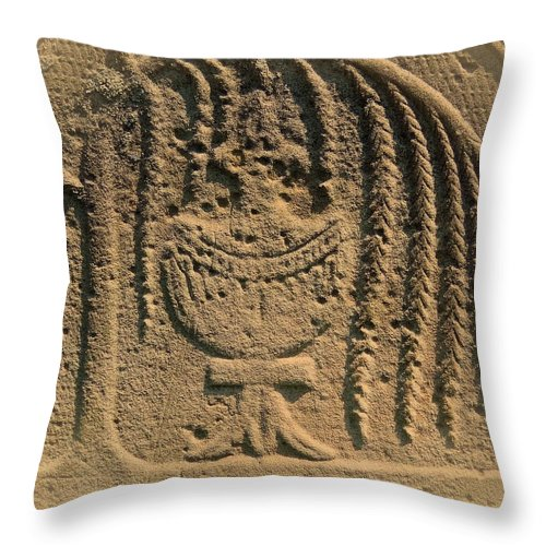 Memorial Throw Pillow featuring the photograph Beyond The Tree Of Life by Lisa Brandel