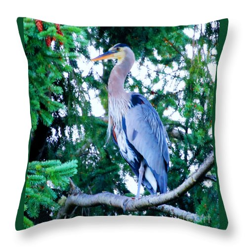 Giant Blue Heron Throw Pillow featuring the photograph Big Bird - Great Blue Heron by Tap On Photo