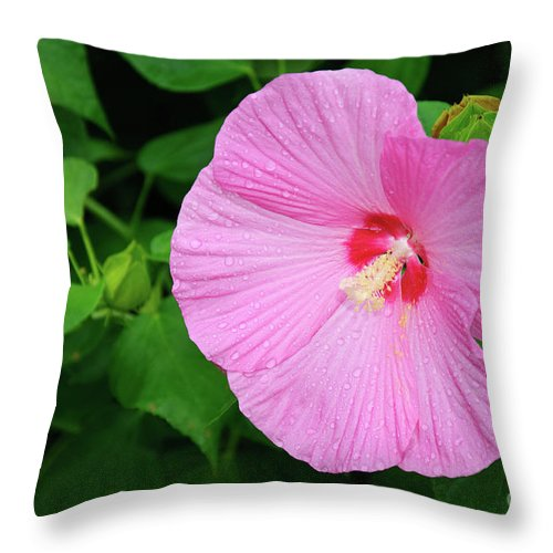 Flower Throw Pillow featuring the photograph Big Bold Pink Beauty by Andee Design