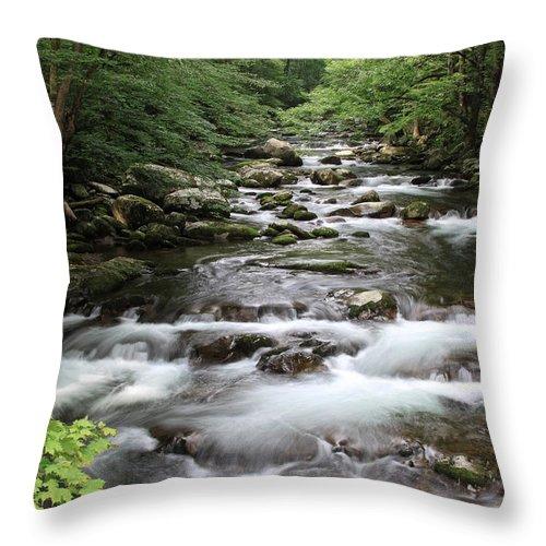 Creek Throw Pillow featuring the photograph Big Creek by Shari Jardina