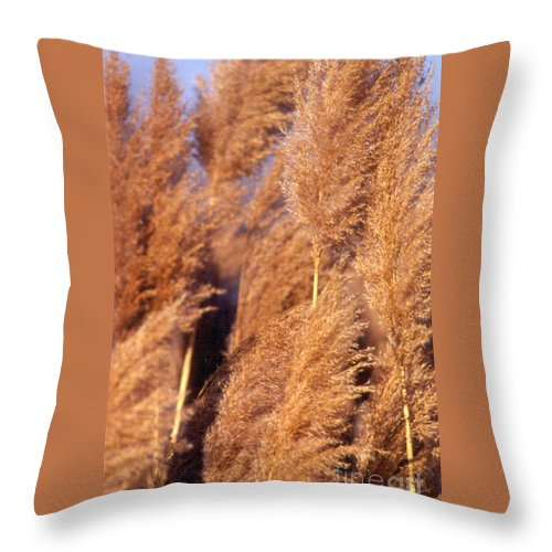 Abstract Throw Pillow featuring the photograph Big Grass by Alan Look