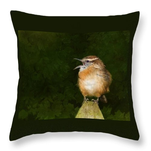 Carolina Wren Throw Pillow featuring the photograph Big Mouth by Steven Richardson