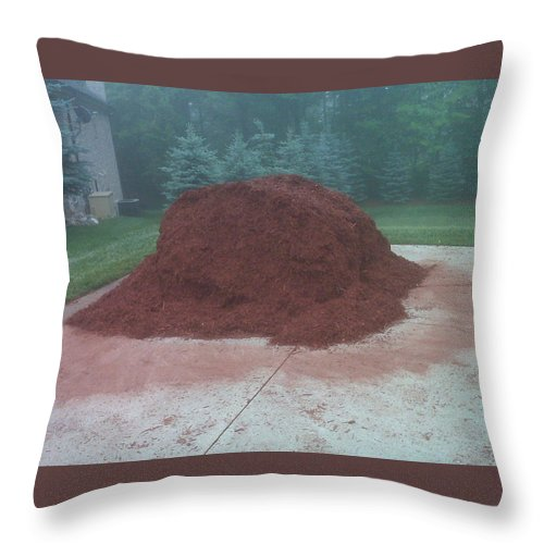 Usa Throw Pillow featuring the photograph Big Pile Of Mulch Time by LeeAnn McLaneGoetz McLaneGoetzStudioLLCcom
