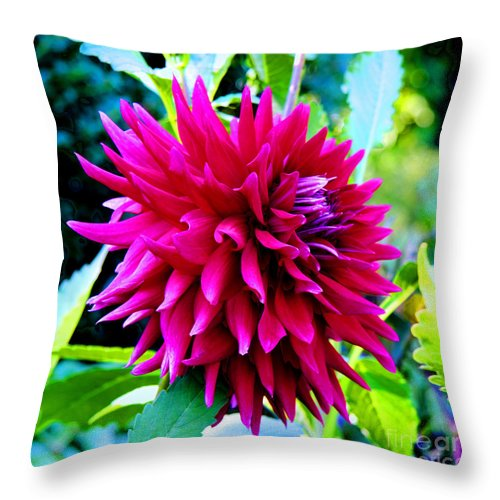 Flower Throw Pillow featuring the photograph Red Smile by Tap On Photo
