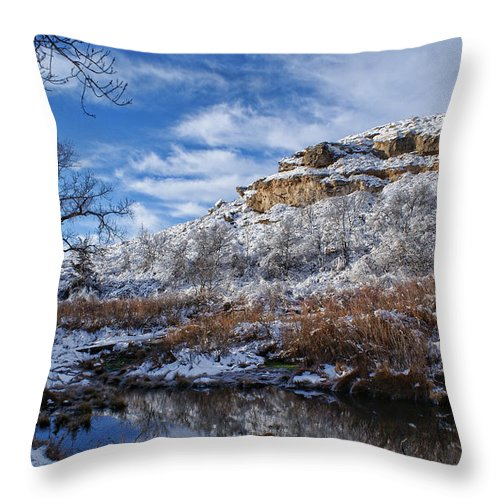 Winter Throw Pillow featuring the photograph Big Springs by Alan Hutchins