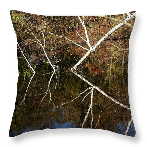 Usa Throw Pillow featuring the photograph Birch Lake Reflections by LeeAnn McLaneGoetz McLaneGoetzStudioLLCcom