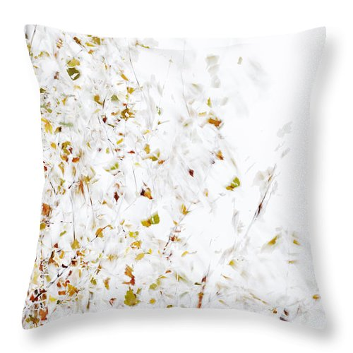 Tree Throw Pillow featuring the photograph Birch Twigs In Autumn - Multiple Layers by Ulrich Kunst And Bettina Scheidulin