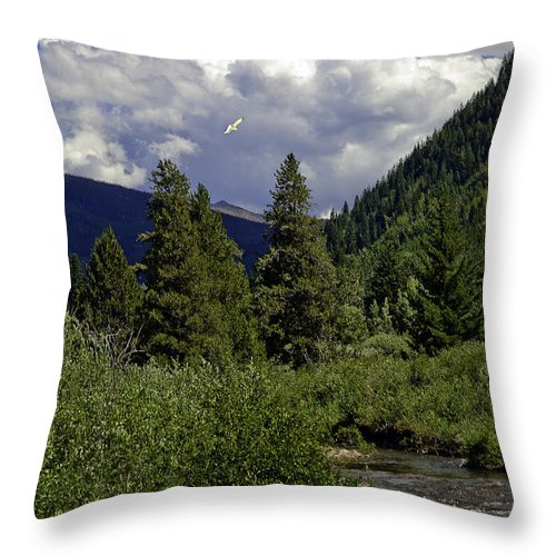 Vail Throw Pillow featuring the photograph Bird Over Vail 1 by Madeline Ellis