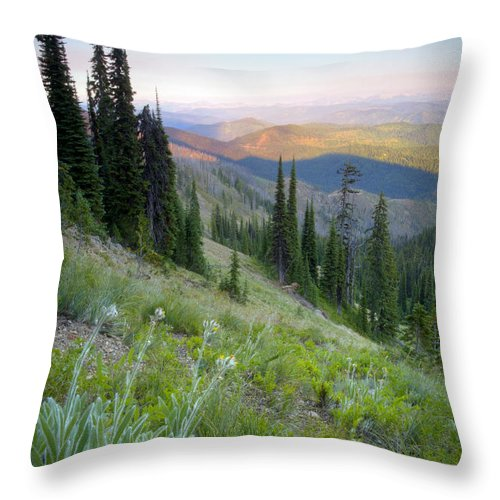 Idaho Throw Pillow featuring the photograph Bitterroot Shadows by Idaho Scenic Images Linda Lantzy