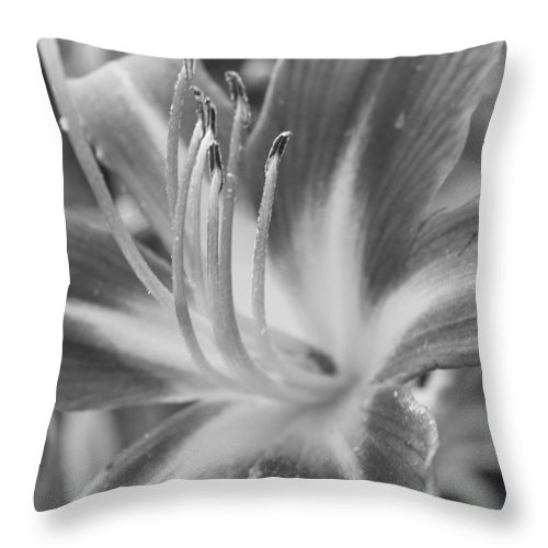 Flora Throw Pillow featuring the photograph Black And White Daylily by Bruce Bley