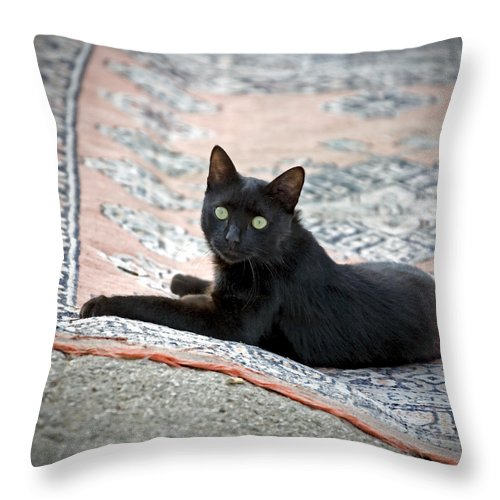 Black Throw Pillow featuring the photograph Black Cat On A Persian Rug by Glennis Siverson