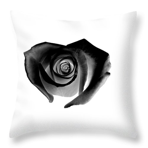 Black Throw Pillow featuring the painting Black Heart-shaped Rose by Glennis Siverson