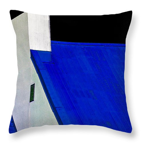 Black Throw Pillow featuring the photograph Black White And Blue by Burney Lieberman