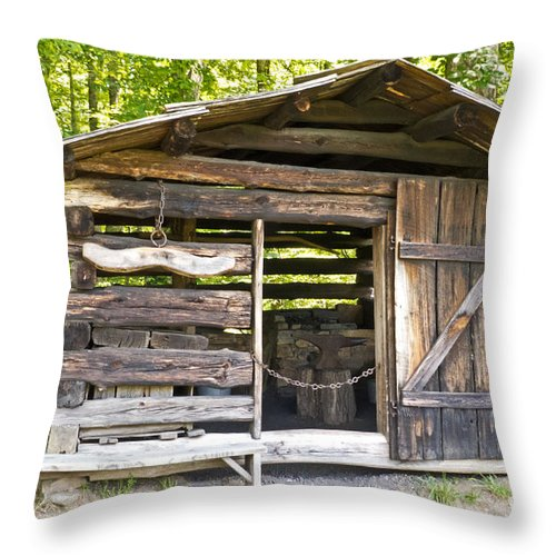 Structure Throw Pillow featuring the photograph Blacksmith by Bob and Nancy Kendrick