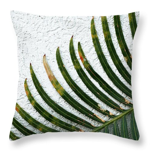 Blades Throw Pillow featuring the photograph Bladed Leaf Against Stucco Wall by Mike Nellums