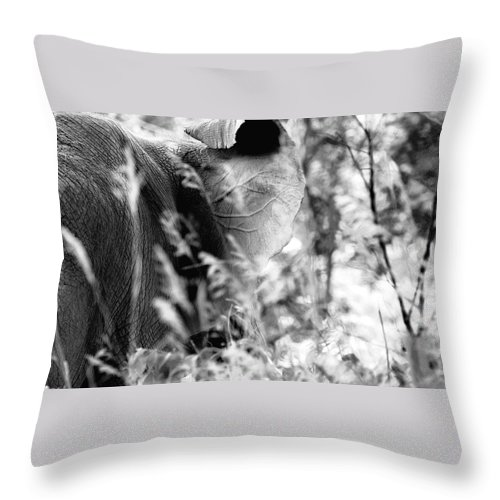 African Elephant Throw Pillow featuring the photograph Blending Into Camouflage by Angela Rath