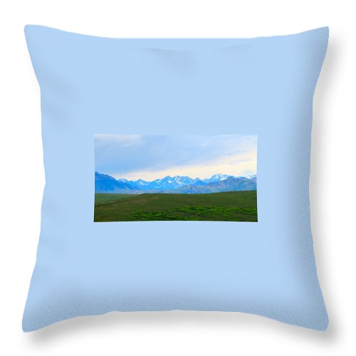 Alaska Throw Pillow featuring the photograph Blissful Shades by Michael Anthony