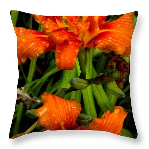 Lilies Throw Pillow featuring the painting Bloomers by Renate Nadi Wesley