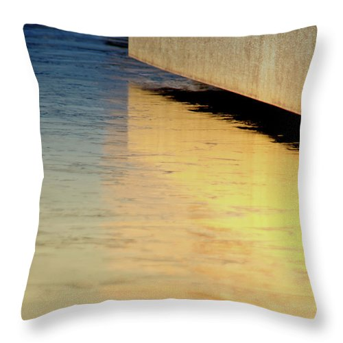Blue Throw Pillow featuring the photograph Blue And Gold by Carolyn Fox