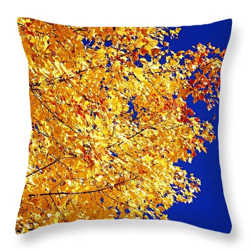 Photography Throw Pillow featuring the photograph Blue And Gold by Larry Ricker