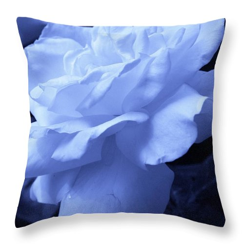 Flora Throw Pillow featuring the photograph Blue Delight by Bruce Bley