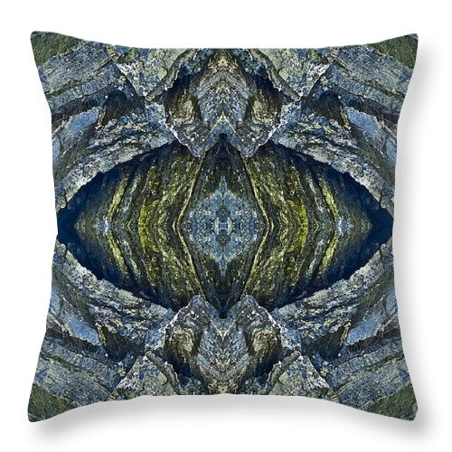 Nature Throw Pillow featuring the photograph Blue Eye by Heiko Koehrer-Wagner