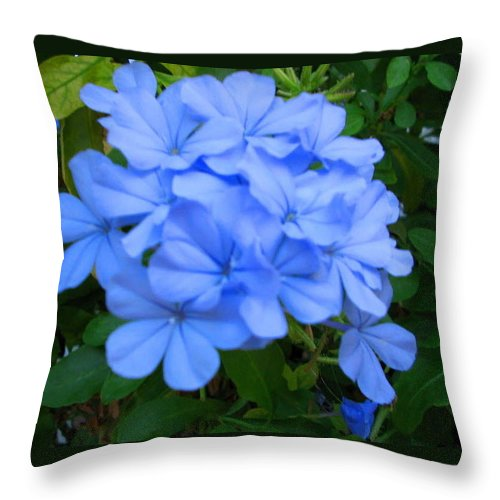 Flower Throw Pillow featuring the photograph Blue Flowers by April Patterson