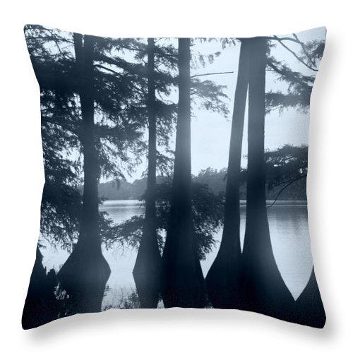 Blue Throw Pillow featuring the photograph Blue Haze Day by Nina Fosdick