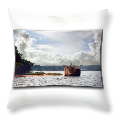 2d Throw Pillow featuring the photograph Blue Heron On The Duck Blind by Brian Wallace