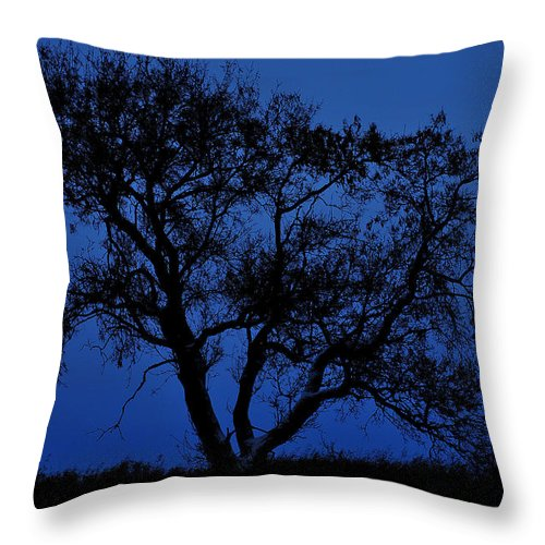 Street Photography Photographs Framed Prints Photographs Framed Prints Throw Pillow featuring the photograph Blue Moon by The Artist Project