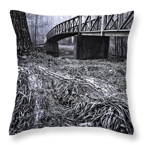 Landscape Throw Pillow featuring the photograph Blue Morning by Fran Gallogly