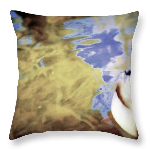 Duck Throw Pillow featuring the photograph Blue Reflections by Diane montana Jansson