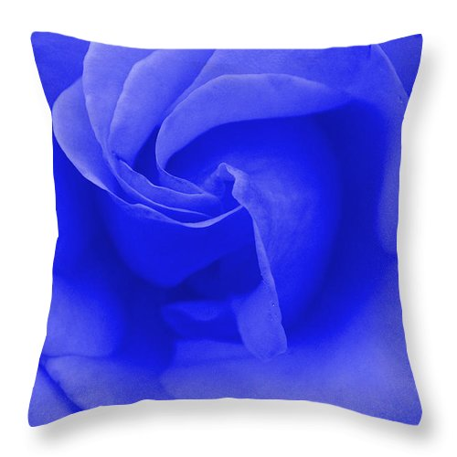 Blue Throw Pillow featuring the photograph Blue Rose by Robyn Stacey