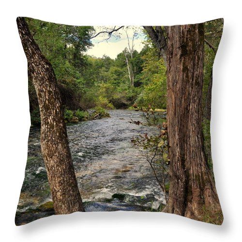 Stream Throw Pillow featuring the photograph Blue Spring Branch by Marty Koch