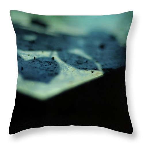 Blue Throw Pillow featuring the photograph Blue Transience by Rebecca Sherman