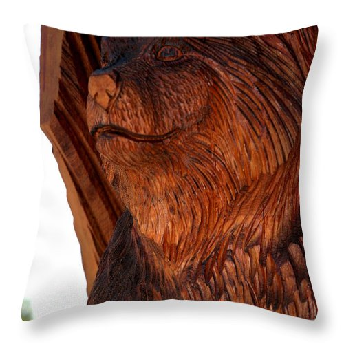 Usa Throw Pillow featuring the photograph Bobcat Closeup by LeeAnn McLaneGoetz McLaneGoetzStudioLLCcom