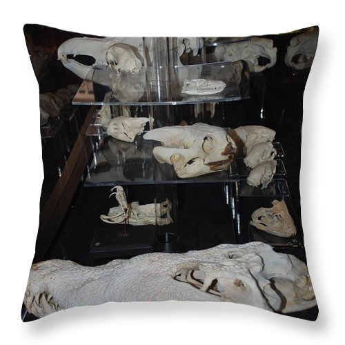 Animal Throw Pillow featuring the photograph Bone Heads by Rob Hans