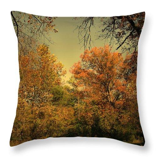 Tree Throw Pillow featuring the photograph Bountiful by Nina Fosdick