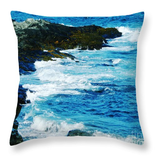 New England Throw Pillow featuring the photograph Brenton Point State Park Newport Ri by Lizi Beard-Ward