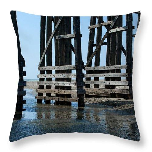 Sandra Bronstein Throw Pillow featuring the photograph Bridge Detail by Sandra Bronstein