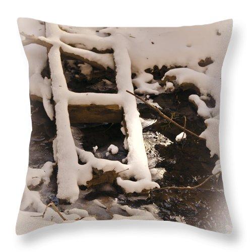 Usa Throw Pillow featuring the photograph Bridge Over Troubled Water by LeeAnn McLaneGoetz McLaneGoetzStudioLLCcom