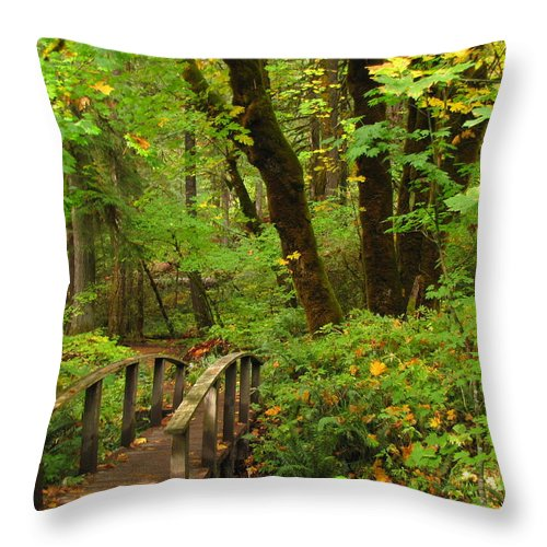 Woods Throw Pillow featuring the photograph Bridge To A Fairytale by Katie Wing Vigil