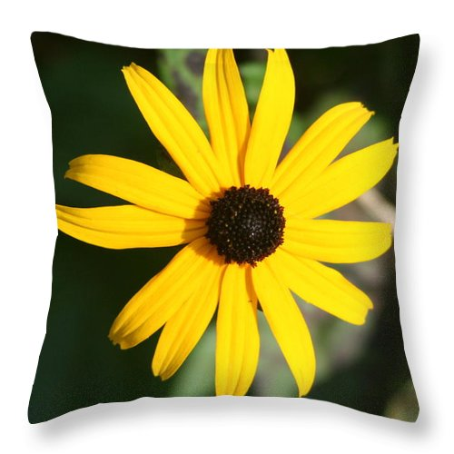 Throw Pillow featuring the photograph Bright Yellow by Barbara S Nickerson