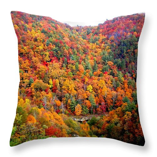 Vacation Throw Pillow featuring the photograph Brilliant Color Trees by April Patterson
