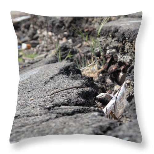 Centralia Pa Throw Pillow featuring the photograph Broken Dreams by Michele Nelson