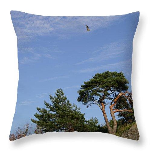 Tree Throw Pillow featuring the photograph Broken Tree by Nina Fosdick