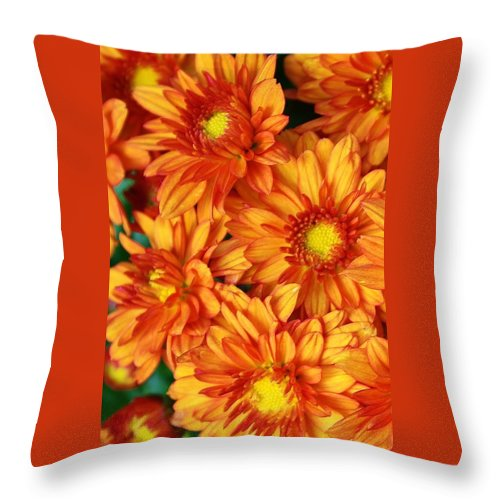 Flora Throw Pillow featuring the photograph Bronze Mums by Bruce Bley