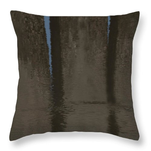 Reflection Throw Pillow featuring the photograph Brown And Blue Reflection by Betty Depee