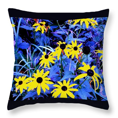 Flowers Throw Pillow featuring the photograph Brown Eyed Susan by Donald Black